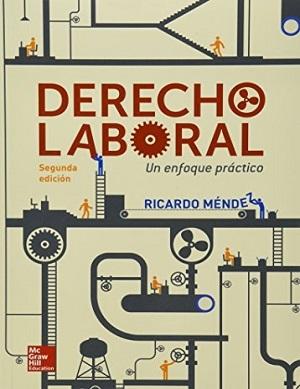 Derecho Laboral, un enfoque práctico - Ricardo Méndez